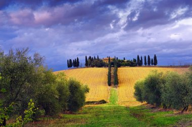 Idyllic rural Tuscan landscape with old farmhouse under thunderstorm sky, Vall d'Orcia Italy, Europe. Cross processing from raw file stock vector