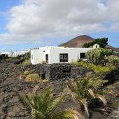 Fotografie Tahiche, Lanzarote
