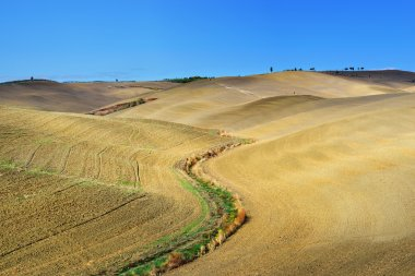 Idyllic Tuscany rural  landscape near Pienza, Vall d'Orcia Italy, Europe. Plowed field on the Crete Senesi hills stock vector