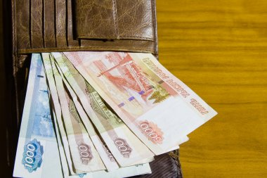 Purse and Russian money