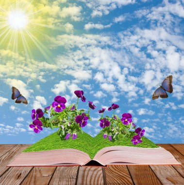 open book on a wooden surface with flowers and butterflies, c