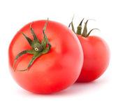Photo Two tomato vegetable