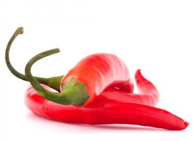 Hot red chili or chilli pepper