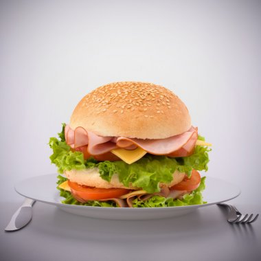 Fast food big sandwich on plate