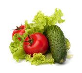 pomodoro, insalata di verdure e insalata di cetrioli
