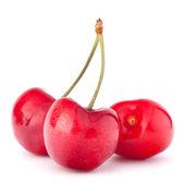 Fotografia bacche ciliegio a forma di cuore