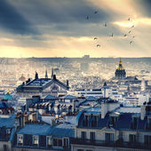 巴黎城市景观采取从蒙马特尔
