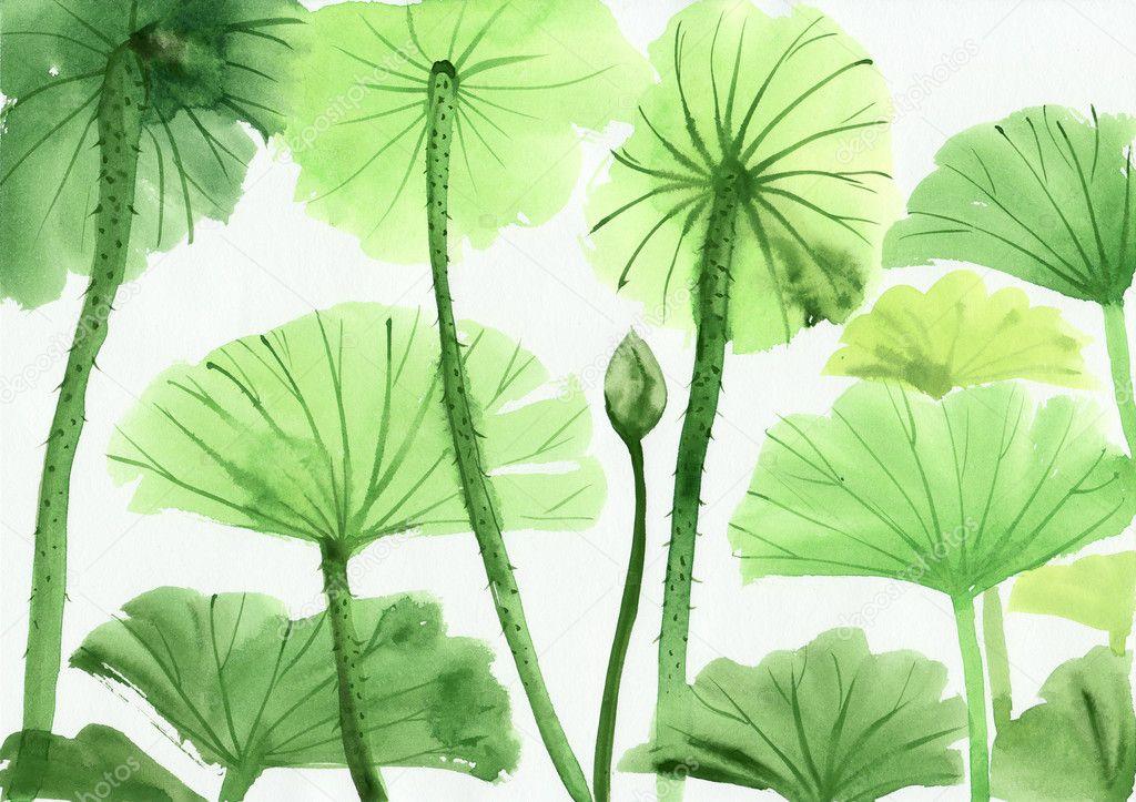 Watercolor painting of green lotus leaves