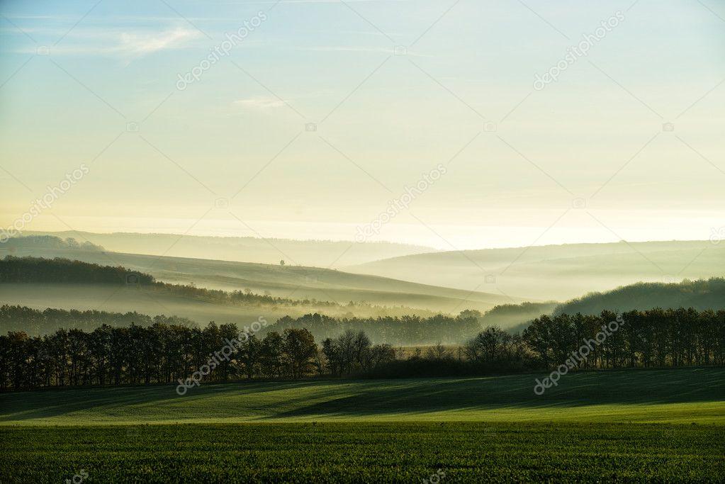 Фотообои Холмы в тумане