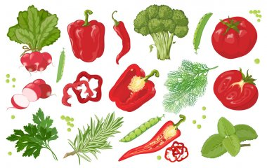 Hand drawn vegetables.