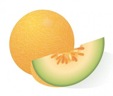 Ripe melon.