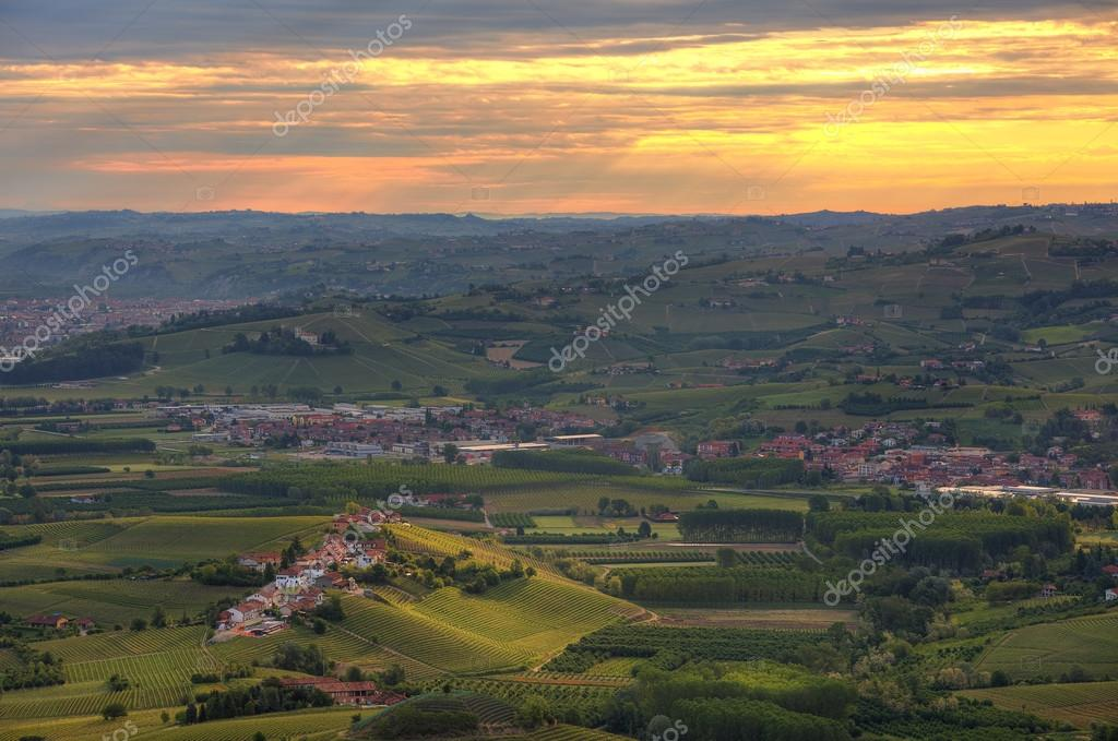 Hills and vineyards at sunrise in Italy.