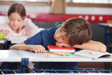 Boy Sleeping While Girl Studying In Background