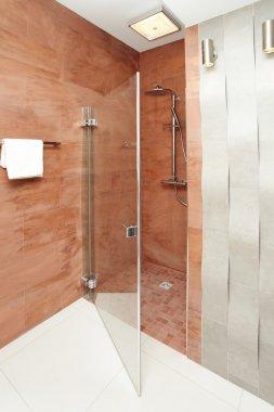 Bathroom shower - interior design