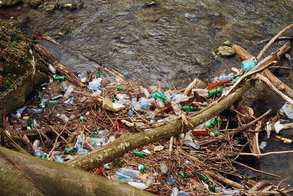 На Прикарпатті підприємство перетворило берег водойми на смітник