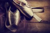 Fotografie Pointe Shoes