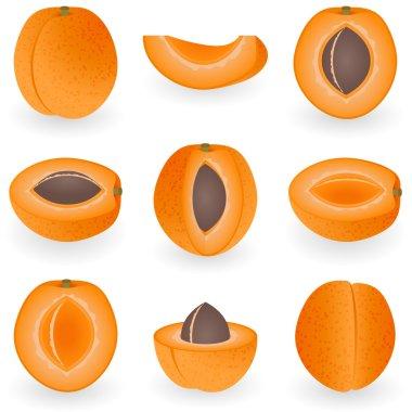 Icon set Apricot