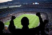 Fényképek Boldog foci rajongók