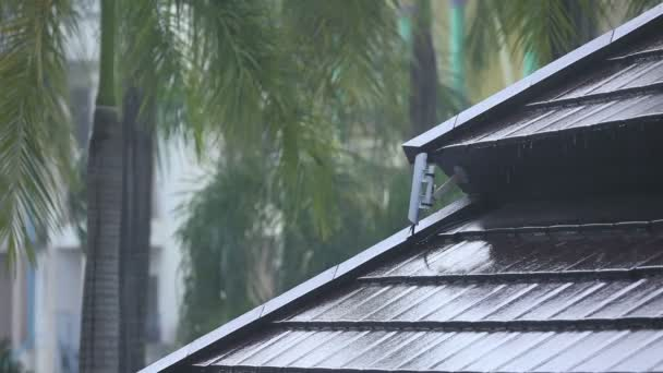 déšť a střecha