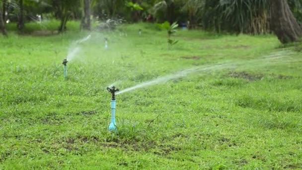 zalévání trávníku