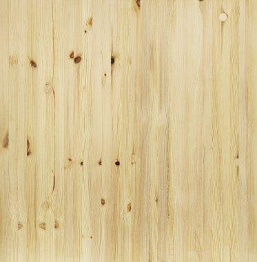 Pine wood texture