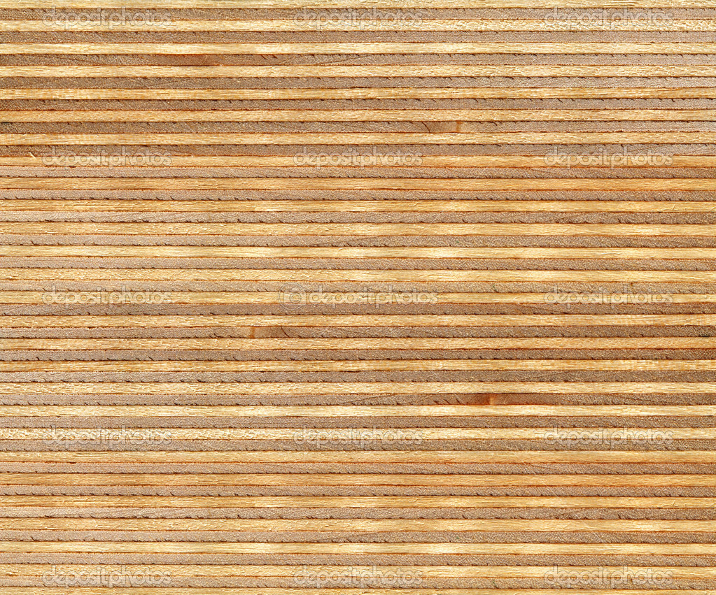 Birch Wood Section Texture Stock Photo Auriso 44204495