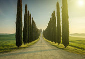 Toskánsko, krajiny. Itálie