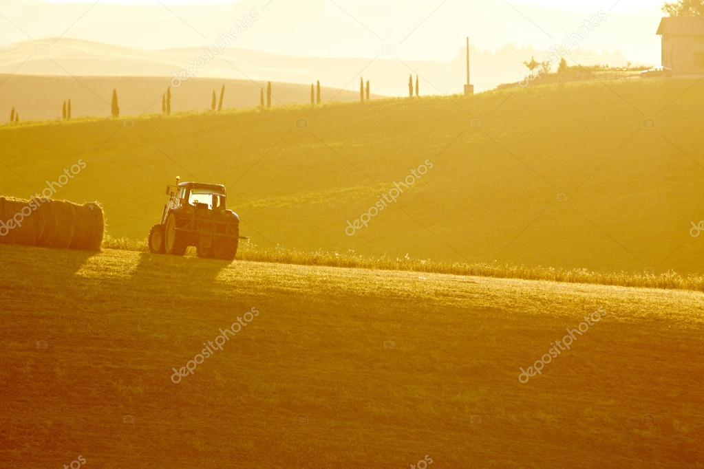 Фотообои Пейзаж Тосканы на закате летом