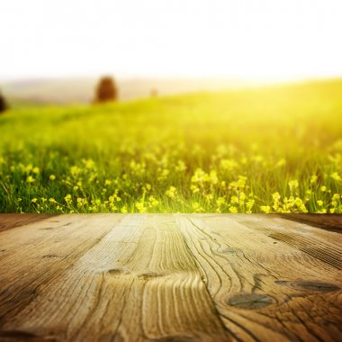 Wood background on the tuscany landscape