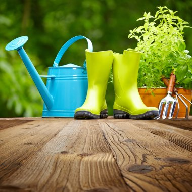 Outdoor gardening tools on old wood table stock vector