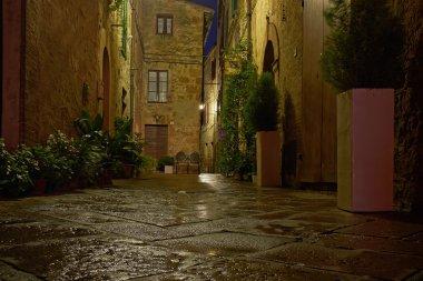 Illuminated Street of Pienza after rain at Night, Italy stock vector