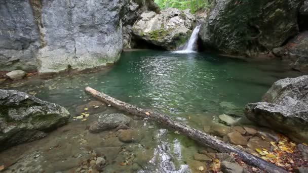 Wasserfall und See mit klarem Wasser in der wilden Natur, lounge video