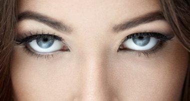 Beautiful blue eyes close-up stock vector