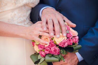 Bride and the groom showing their rings