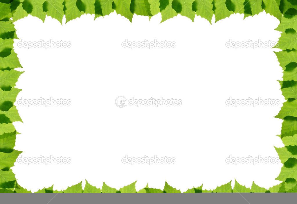 marco de hojas verde abedul — Foto de stock © rbvrbv #44447969