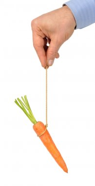 Carrot on String