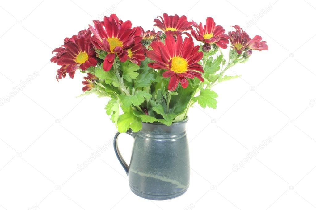 국화 꽃병 — 스톡 사진 © photooasis #43147387