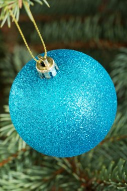 One blue christmas ball handing on a tree.