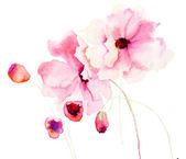 bunte rosa Blüten