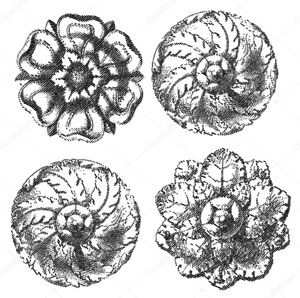 four engraved circle ornaments stock vector aakbar 45919619