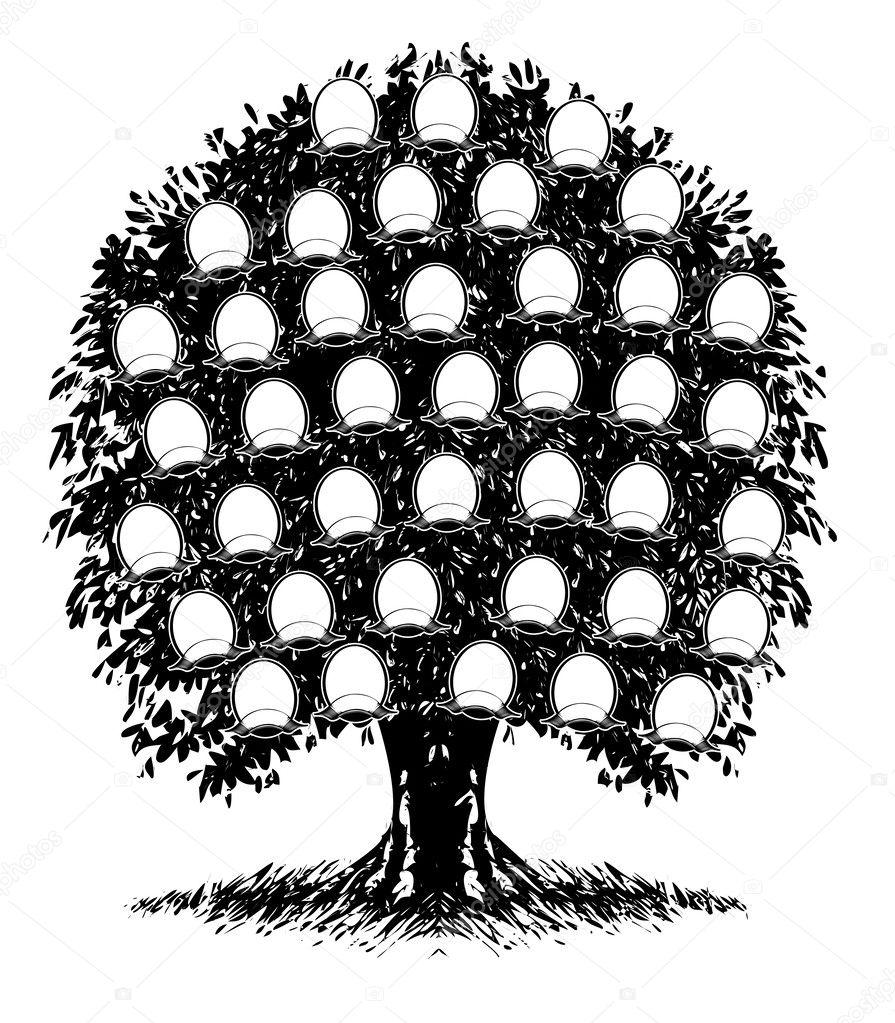 árbol Genealógico Vector De Stock Aakbar 46324585