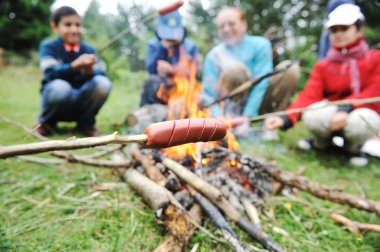 Barbecue in nature, group of preparing sausages on fire (note: shallow dof)