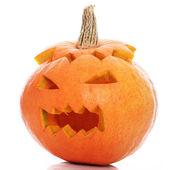 Halloween dýně