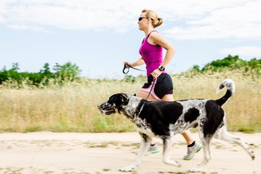 Woman runner running, walking dog in summer nature