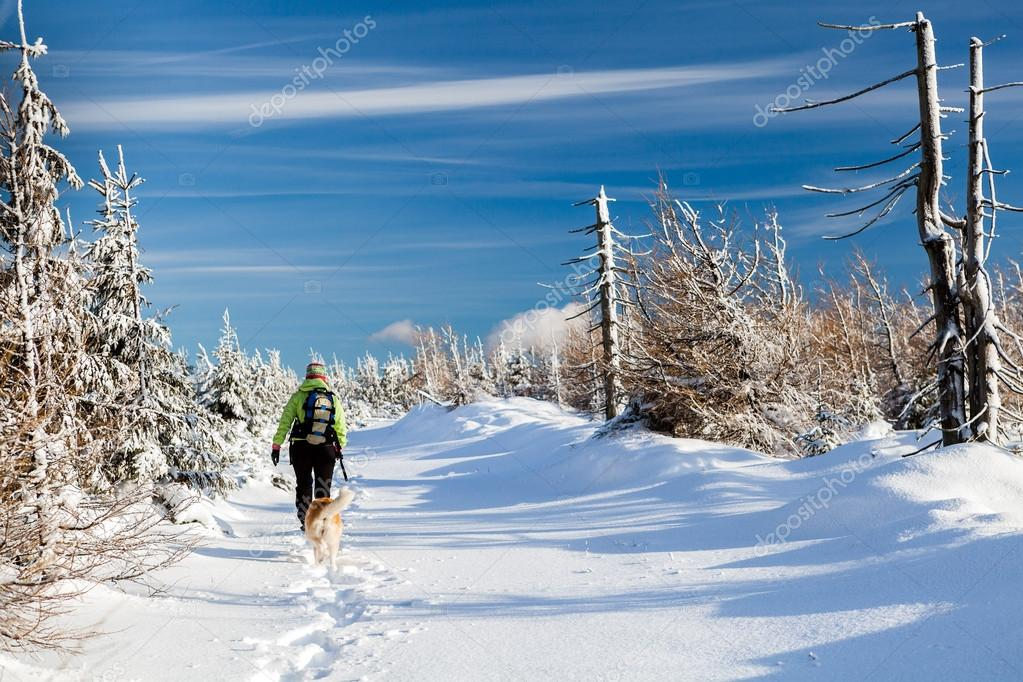 Woman hiking with dog in winter mountains