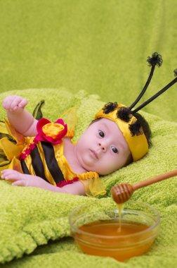 Honey Bee Baby on green background