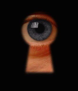 Keyhole surveillance