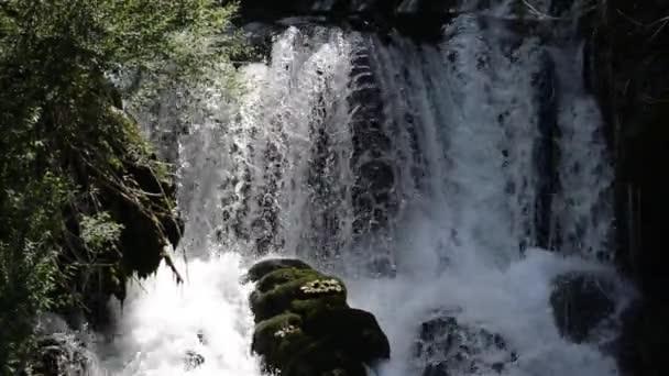 vodopád s čerstvou čistou vodou v zeleni