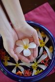 Fotografie ženská ruka a květina ve vodě