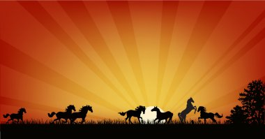 Illustration with horse herd at red sunset stock vector